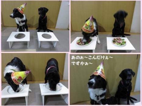 ハリー 💐 お誕生日
