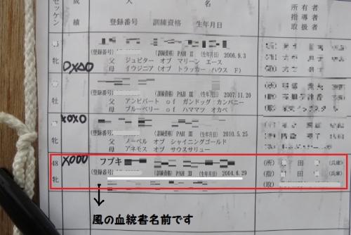 京都ラブラドール競技大会