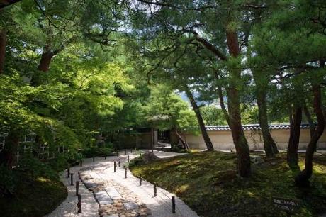 茶室寿立庵と前庭