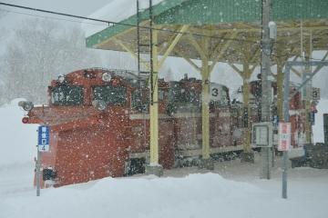 北海道旅行201502(56)