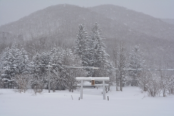 北海道旅行201502(86)