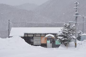 北海道旅行201502(87)