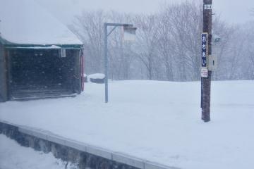 北海道旅行201601(54)