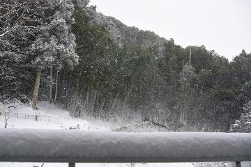 雪景色201601(1)