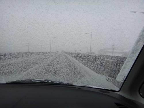 雪降ったの005