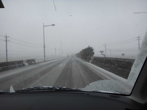 雪降ったの006