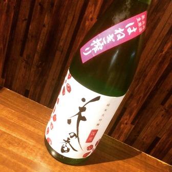 花の香 純米大吟醸 27BY 桜花 無濾過生原酒