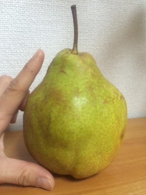 1512yonashi.jpg