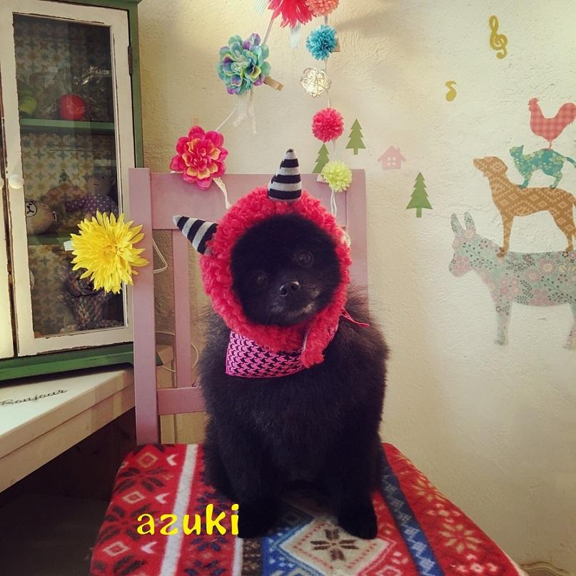 azuki 小谷