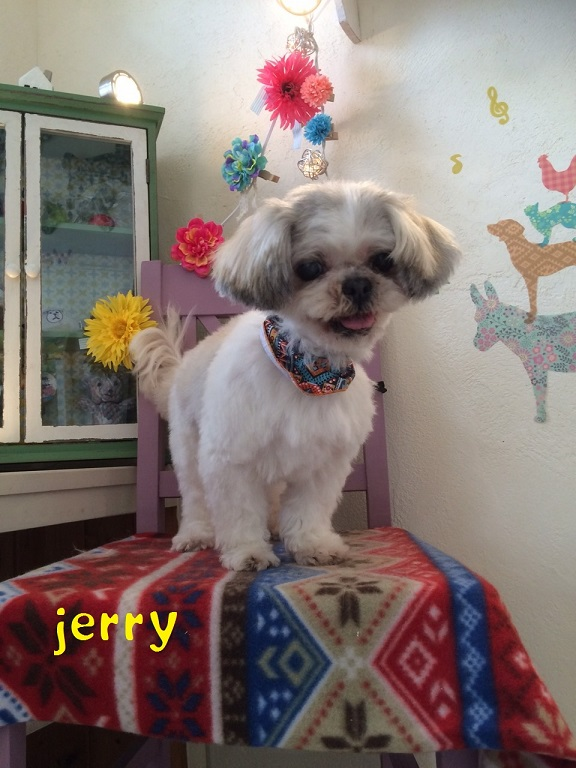jerry 永山