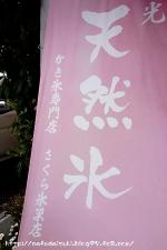 さくら氷菓店◇旗