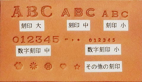 ACIMG1980-1.jpg