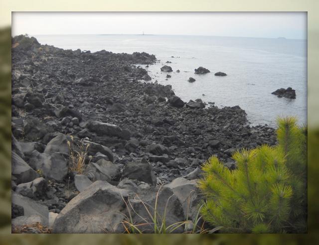 溶岩の海辺