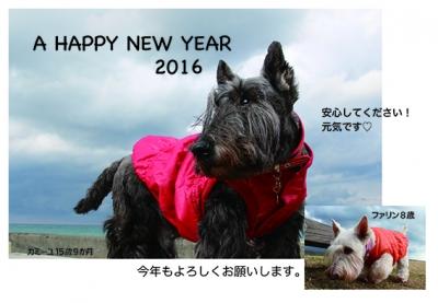 2016010101.jpg