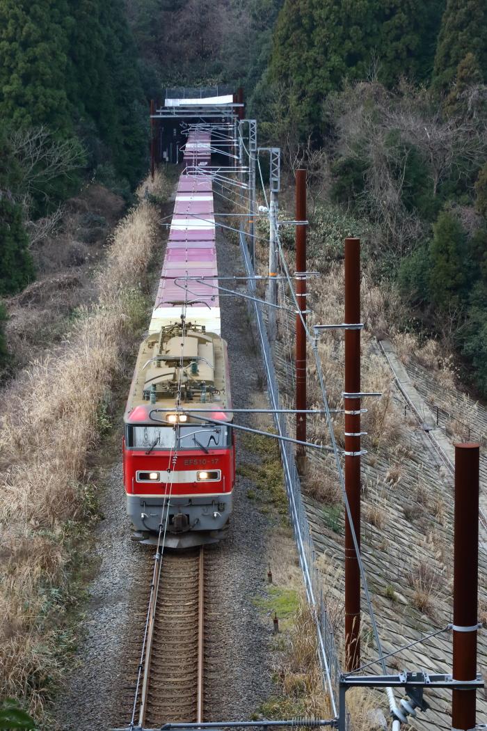 KA0A3259.jpg
