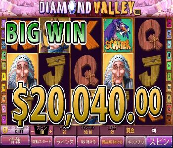 Diamond-Valley-Pro20040win.jpg