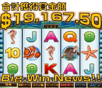 DolphinReef-19167Win-Prize.jpg