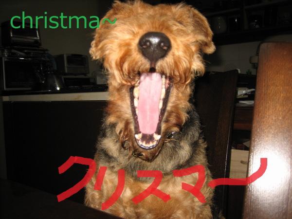 christma~
