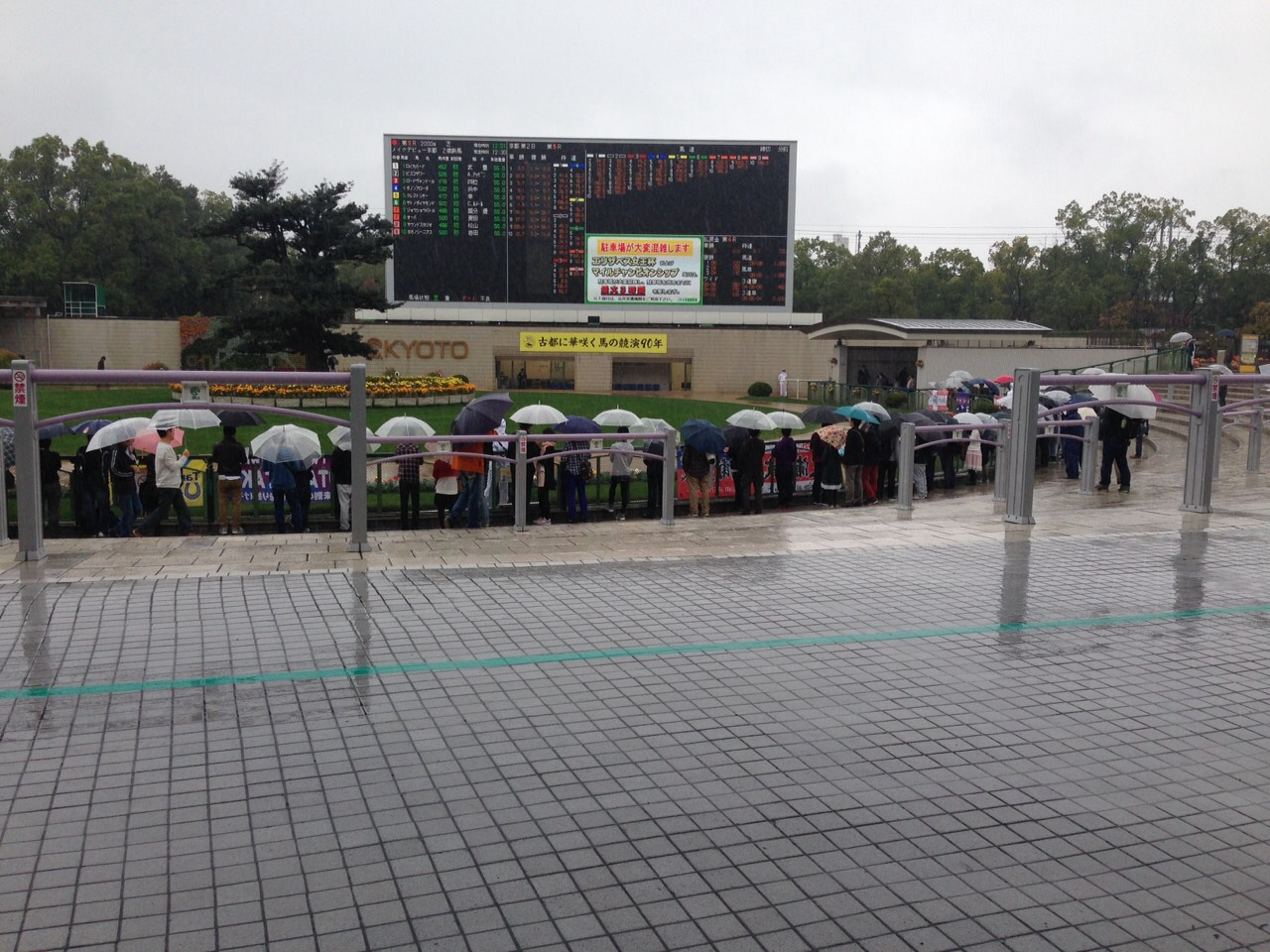 11月8日京都競馬場
