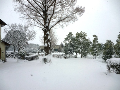 雪2016-3