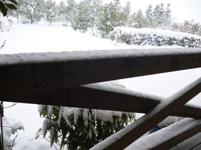 雪2016-2
