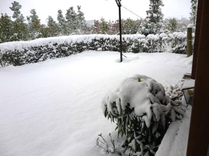 雪2016-2 (2)
