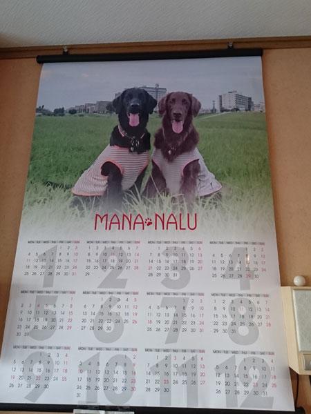 20151231カレンダー