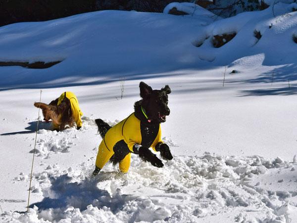 20160211雪遊びm-2