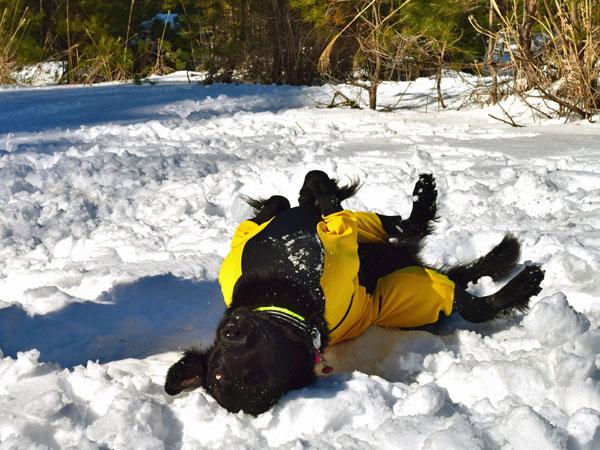20160211雪遊びm-14