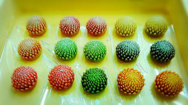 2015-12-15-13-39-50_deco_20151215165209はさみ菊2