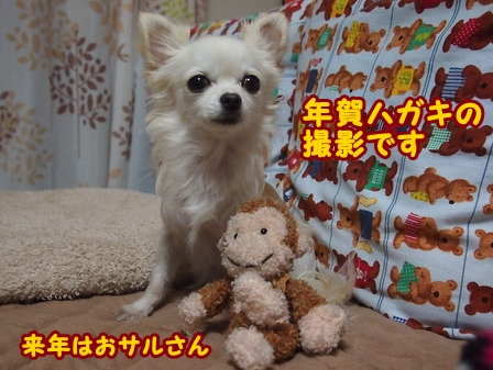 blog7122a.jpg
