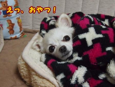blog7127a.jpg