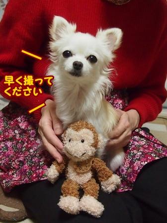 blog7134a.jpg