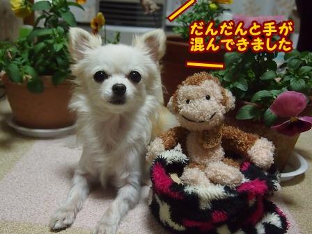 blog7140a.jpg