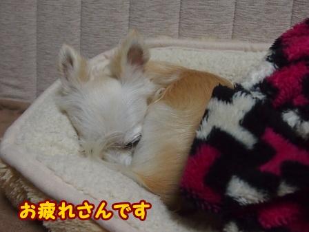 blog7142a.jpg