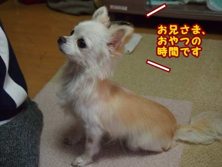 blog7163a.jpg