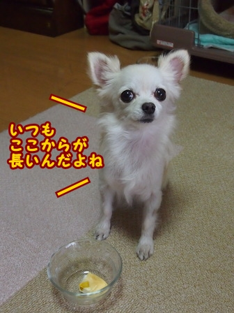 blog7165a.jpg