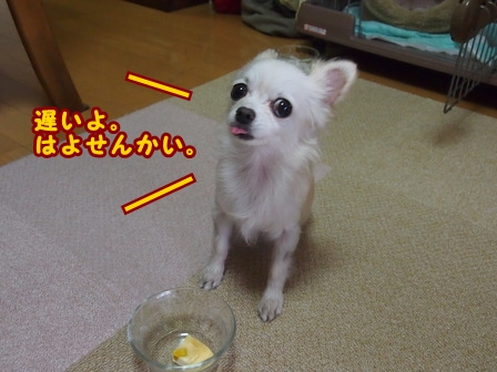blog7167a.jpg