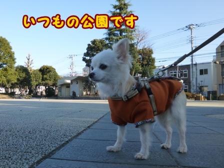 blog7179a.jpg