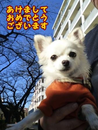 blog7184a.jpg
