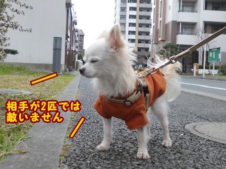 blog7187a.jpg