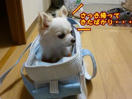 blog7188a.jpg