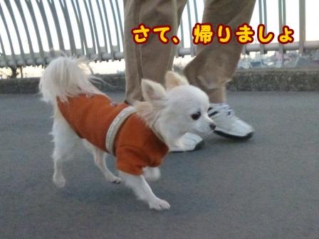 blog7190a.jpg