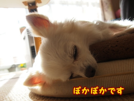 blog7201.jpg