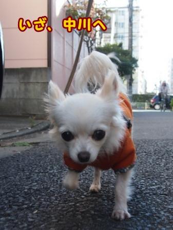 blog7208a.jpg
