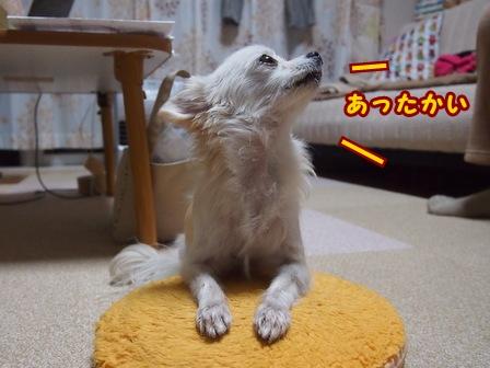 blog7228a.jpg