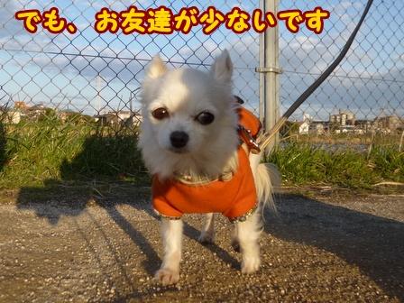 blog7278a.jpg