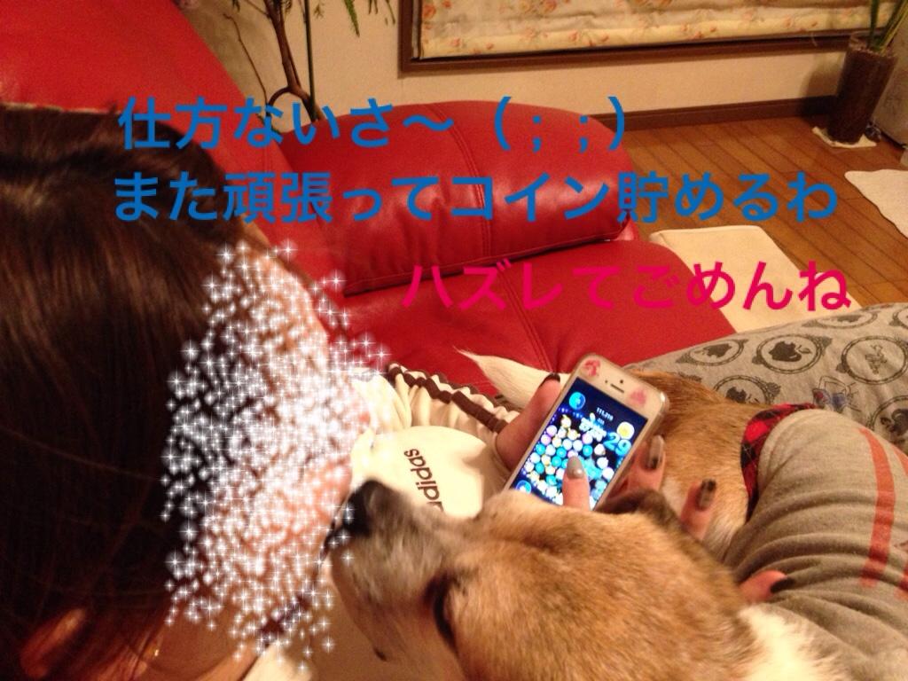 fc2blog_201602060015316e3.jpg
