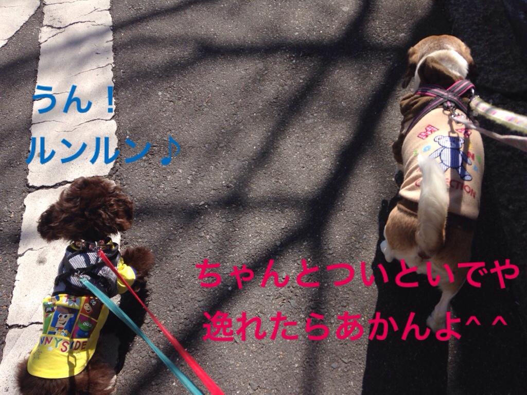 fc2blog_201602121929578c7.jpg