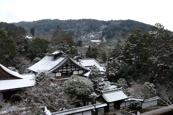 snow2016_5.jpg